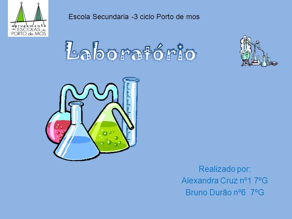 Realizado por: Alexandra Cruz nº1 7ºG Bruno Durão nº6 7ºG Escola Secundaria -3 ciclo Porto de mos