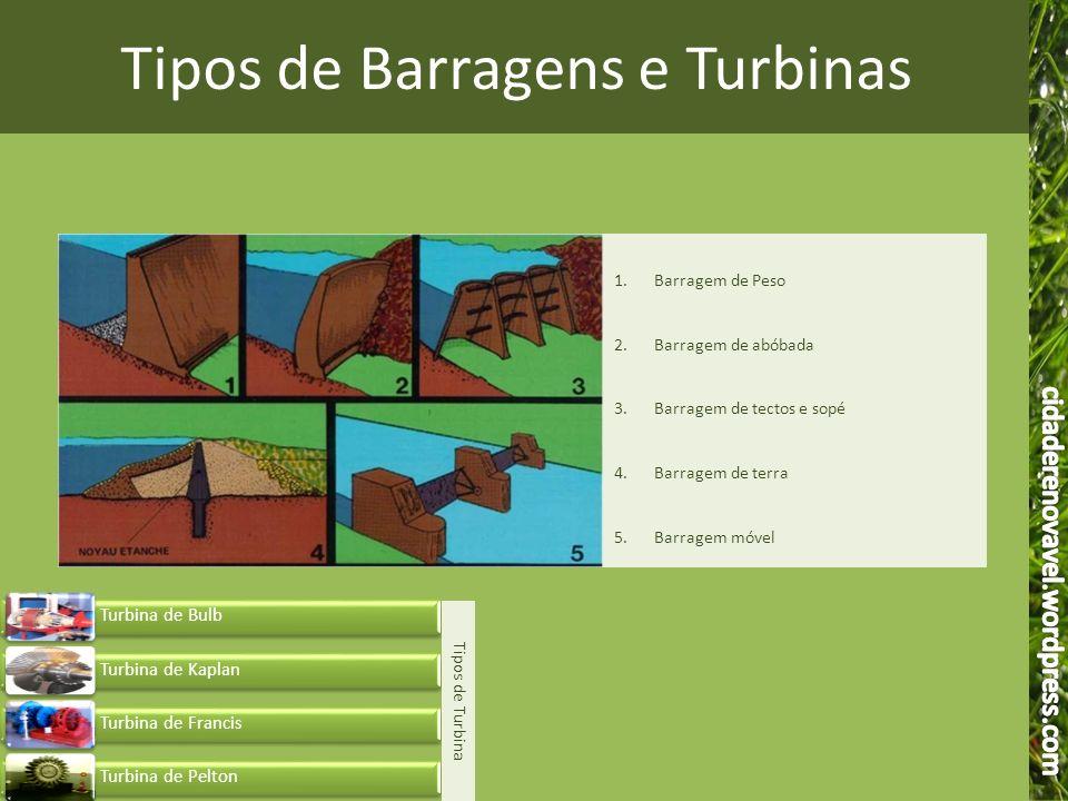 Tipos de Barragens e Turbinas 1.Barragem de Peso 2.Barragem de abóbada 3.Barragem de tectos e sopé 4.Barragem de terra 5.Barragem móvel Tipos de Turbi