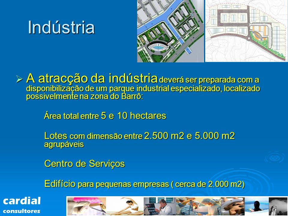 Indústria A atracção da indústria deverá ser preparada com a disponibilização de um parque industrial especializado, localizado possivelmente na zona