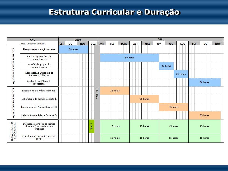 Os desafios do professor on-line Estrutura Curricular e Duração