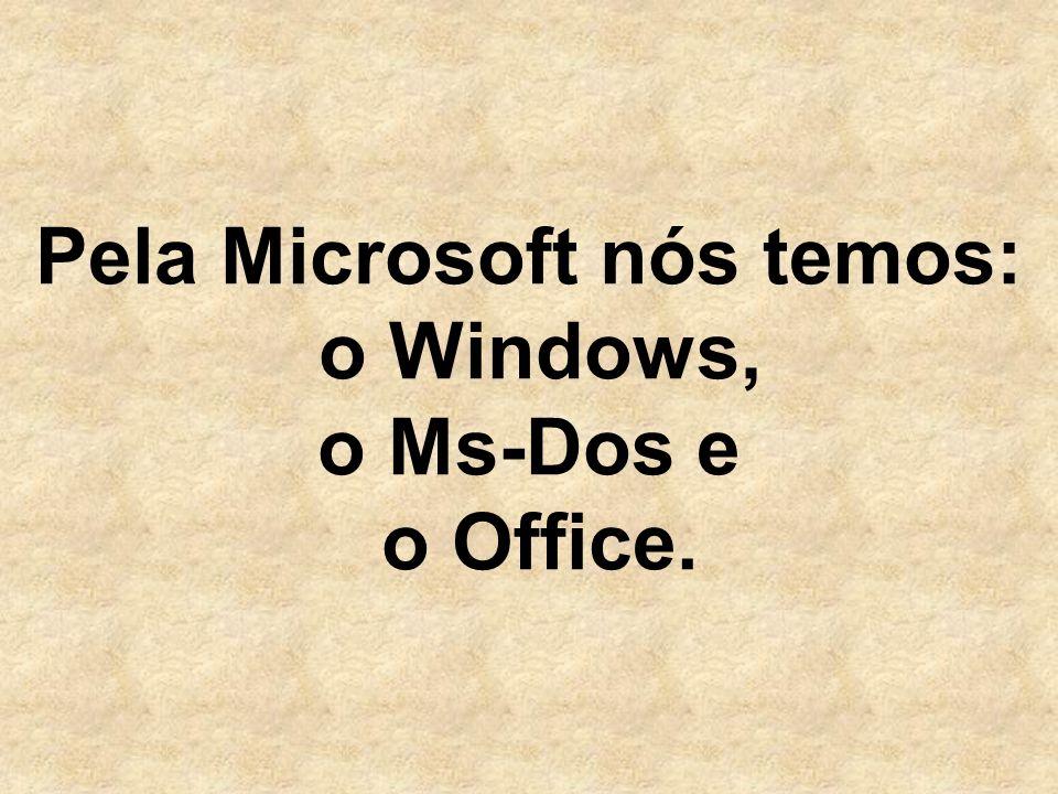 Pela Microsoft nós temos: o Windows, o Ms-Dos e o Office.