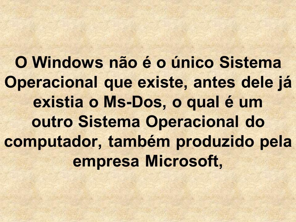 O Windows não é o único Sistema Operacional que existe, antes dele já existia o Ms-Dos, o qual é um outro Sistema Operacional do computador, também produzido pela empresa Microsoft,