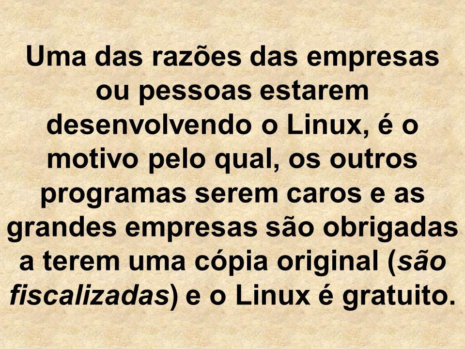 Uma das razões das empresas ou pessoas estarem desenvolvendo o Linux, é o motivo pelo qual, os outros programas serem caros e as grandes empresas são obrigadas a terem uma cópia original (são fiscalizadas) e o Linux é gratuito.