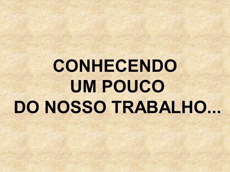 CONHECENDO UM POUCO DO NOSSO TRABALHO...