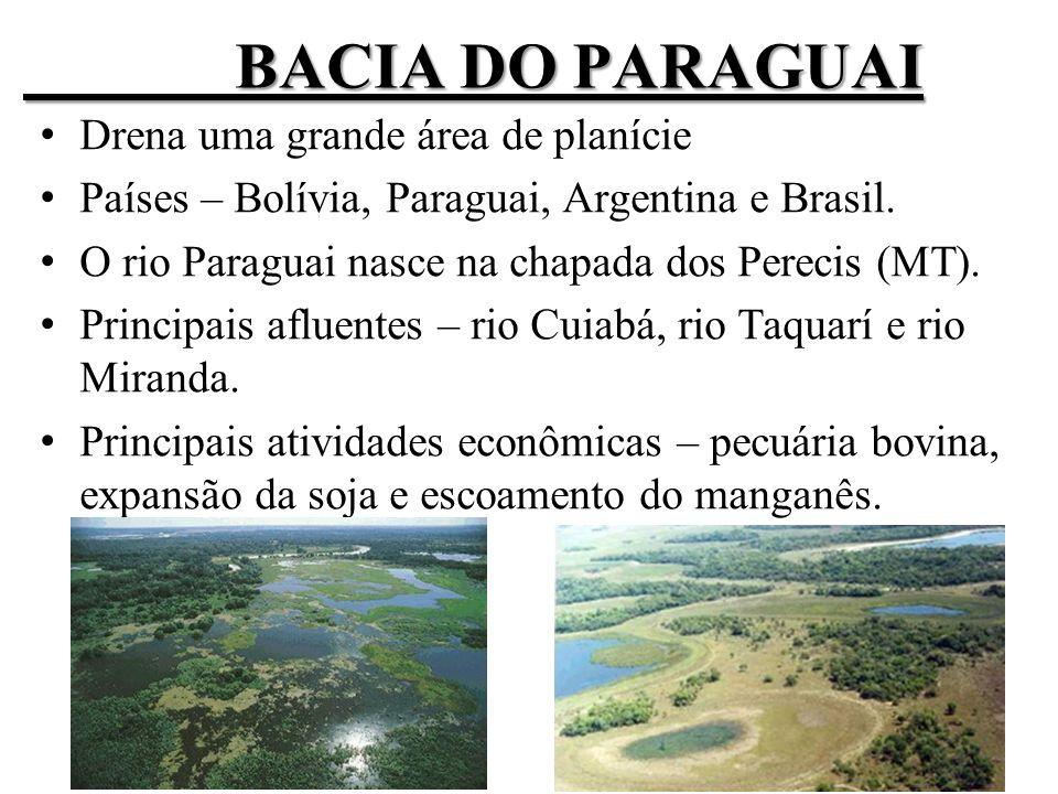BACIA DO PARAGUAI Drena uma grande área de planície Países – Bolívia, Paraguai, Argentina e Brasil.