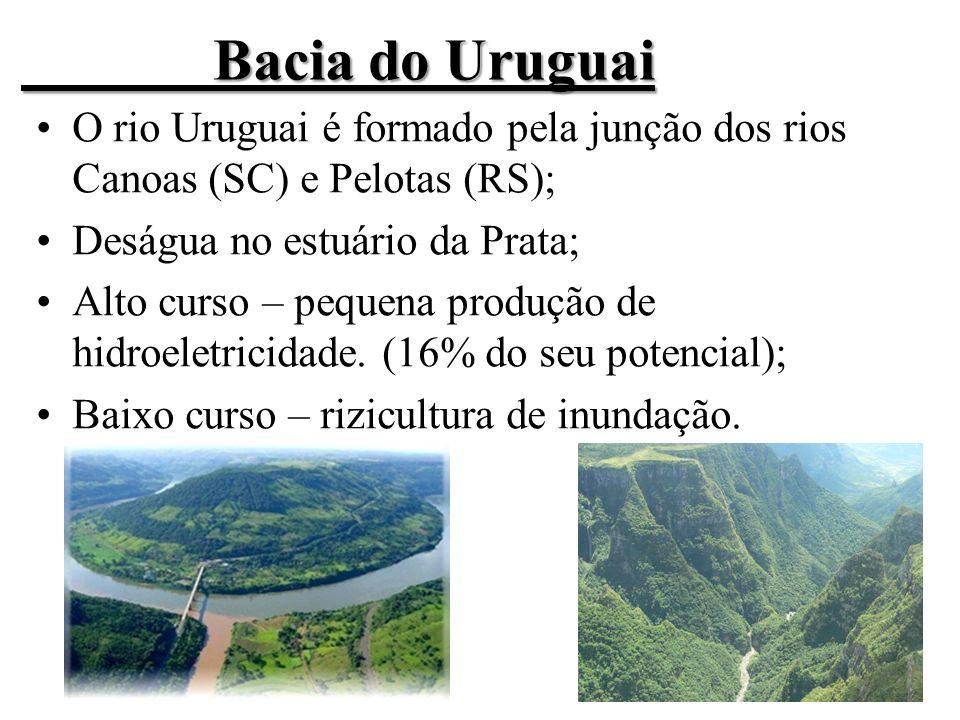 Bacia do Uruguai O rio Uruguai é formado pela junção dos rios Canoas (SC) e Pelotas (RS); Deságua no estuário da Prata; Alto curso – pequena produção de hidroeletricidade.