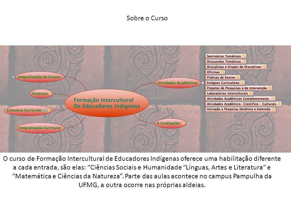 O curso de Formação Intercultural de Educadores Indígenas oferece uma habilitação diferente a cada entrada, são elas: Ciências Sociais e Humanidade Lí