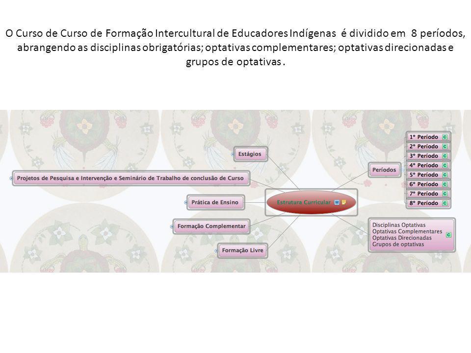 O Curso de Curso de Formação Intercultural de Educadores Indígenas é dividido em 8 períodos, abrangendo as disciplinas obrigatórias; optativas complem