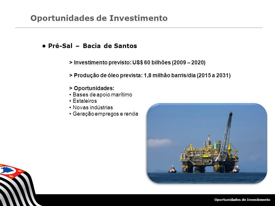 Oportunidades de Investimento Pré-Sal – Bacia de Santos > Investimento previsto: US$ 60 bilhões (2009 – 2020) > Produção de óleo prevista: 1,8 milhão