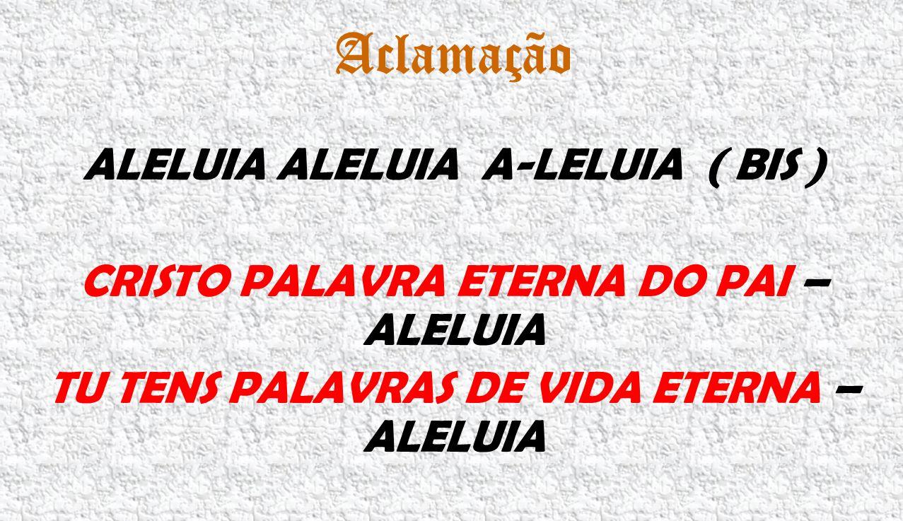 Aclamação ALELUIA ALELUIA A-LELUIA ( BIS ) CRISTO PALAVRA ETERNA DO PAI – ALELUIA TU TENS PALAVRAS DE VIDA ETERNA – ALELUIA