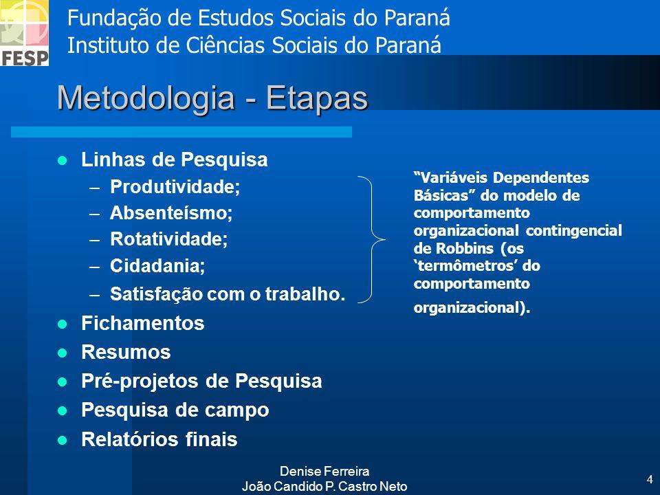 Fundação de Estudos Sociais do Paraná Instituto de Ciências Sociais do Paraná Denise Ferreira João Candido P. Castro Neto 4 Metodologia - Etapas Linha