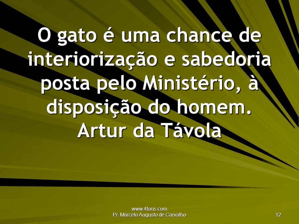 www.4tons.com Pr. Marcelo Augusto de Carvalho 12 O gato é uma chance de interiorização e sabedoria posta pelo Ministério, à disposição do homem. Artur
