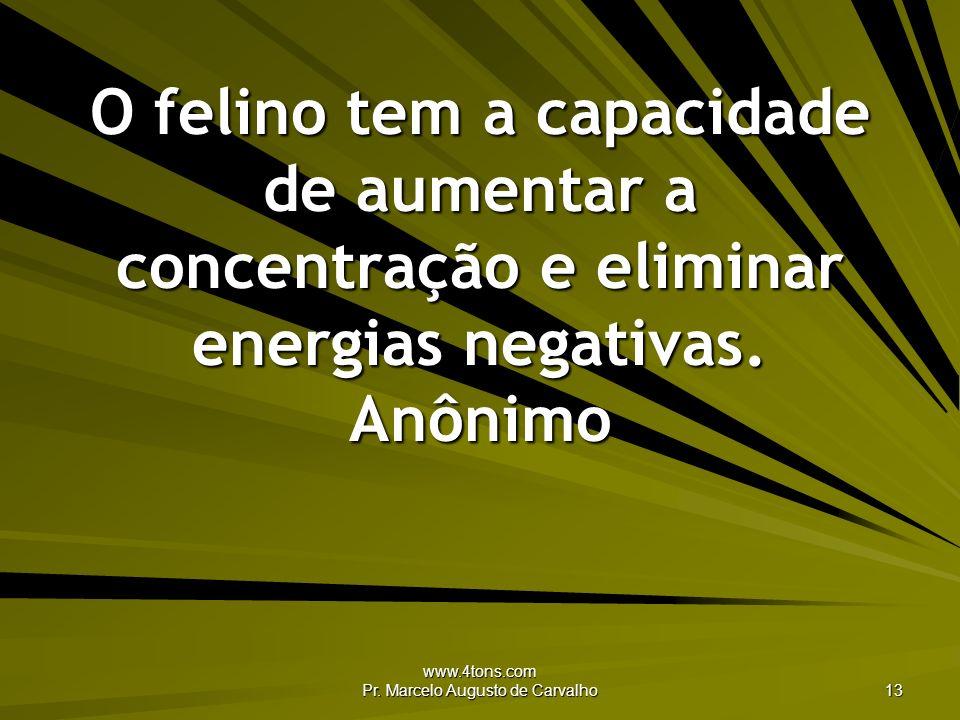 www.4tons.com Pr. Marcelo Augusto de Carvalho 13 O felino tem a capacidade de aumentar a concentração e eliminar energias negativas. Anônimo