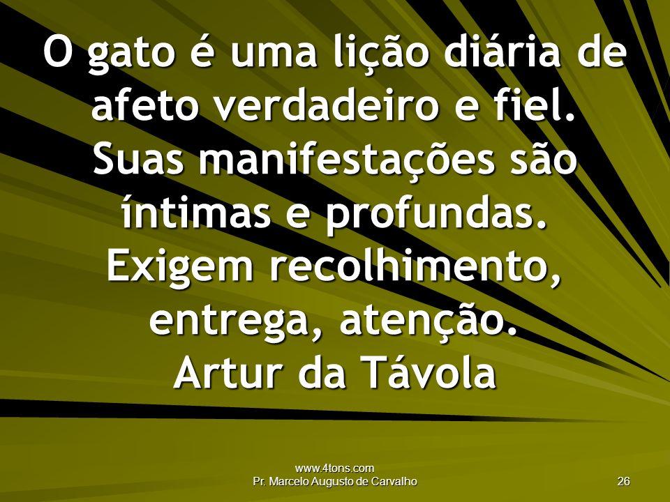 www.4tons.com Pr. Marcelo Augusto de Carvalho 26 O gato é uma lição diária de afeto verdadeiro e fiel. Suas manifestações são íntimas e profundas. Exi