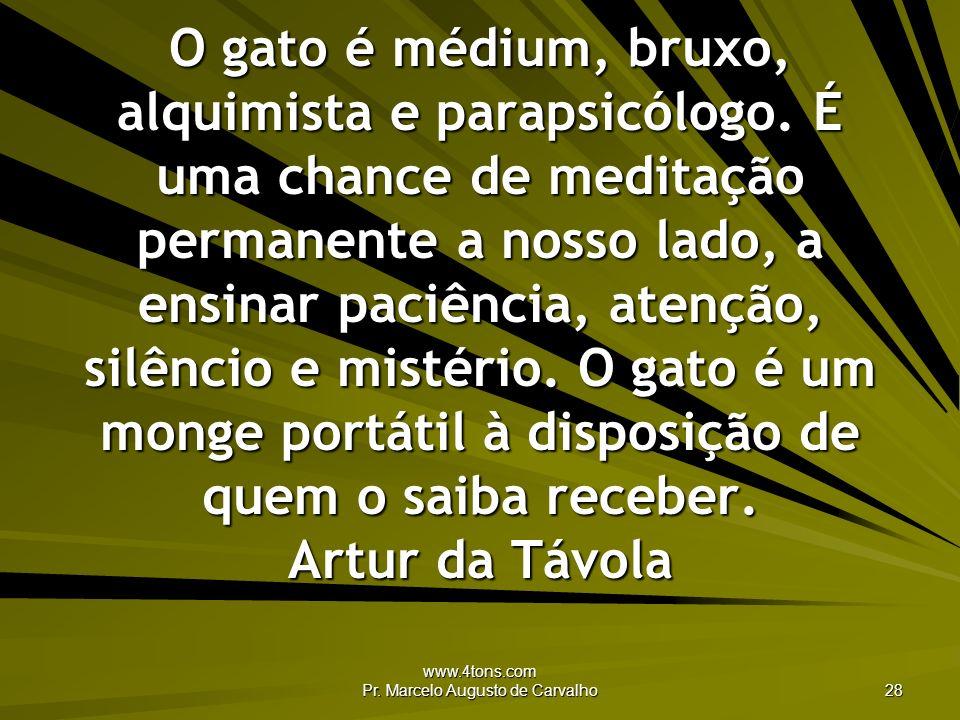 www.4tons.com Pr. Marcelo Augusto de Carvalho 28 O gato é médium, bruxo, alquimista e parapsicólogo. É uma chance de meditação permanente a nosso lado