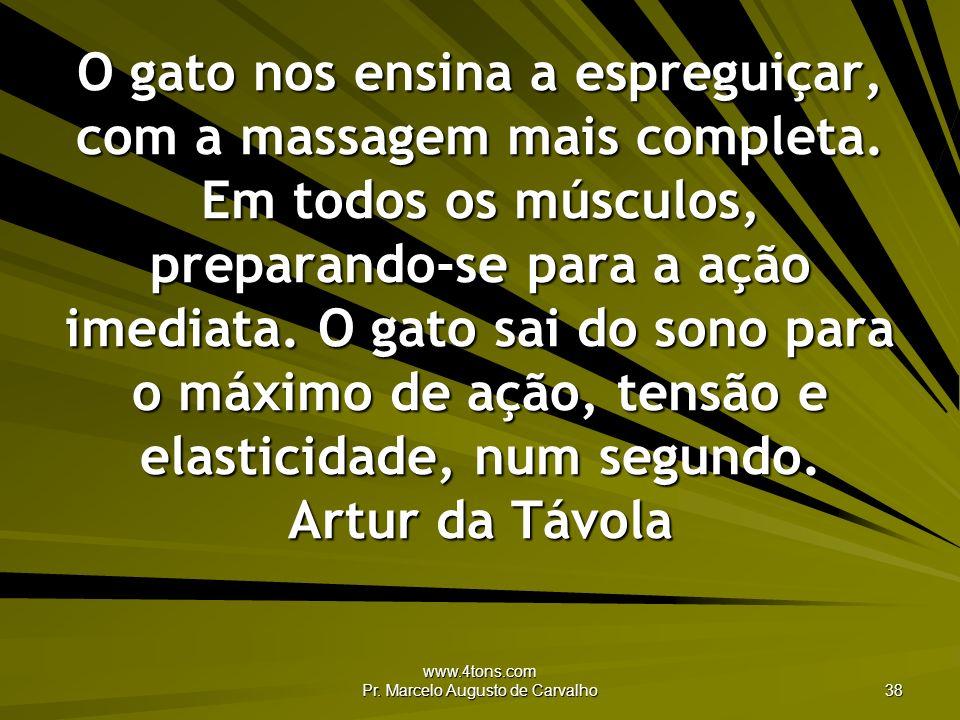 www.4tons.com Pr. Marcelo Augusto de Carvalho 38 O gato nos ensina a espreguiçar, com a massagem mais completa. Em todos os músculos, preparando-se pa