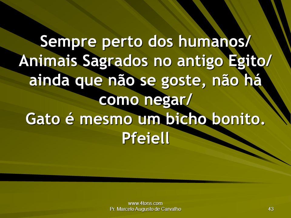 www.4tons.com Pr. Marcelo Augusto de Carvalho 43 Sempre perto dos humanos/ Animais Sagrados no antigo Egito/ ainda que não se goste, não há como negar