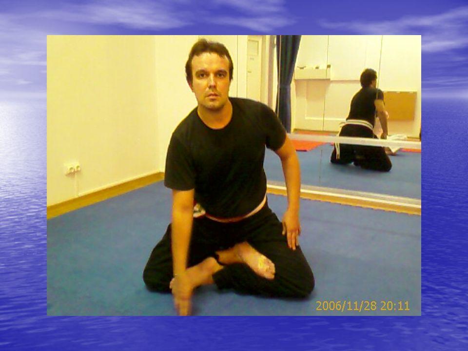 No Kung-Fu é de extrema relevância a correcta Postura e o estiramento dos meridianos, os quais transportam a Energia Vital KI que nos anima e dá vida.