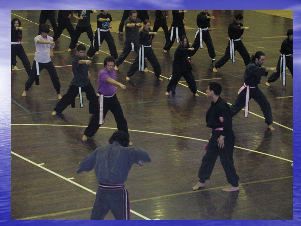 Kung-Fu Terapêutico: Kung-Fu Terapêutico: O alvo deste Kung-Fu é abranger o maior número de pessoas independentemente da condição física das mesmas, idade ou sexo.