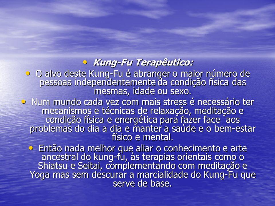Kung-Fu Terapêutico: Kung-Fu Terapêutico: O alvo deste Kung-Fu é abranger o maior número de pessoas independentemente da condição física das mesmas, i