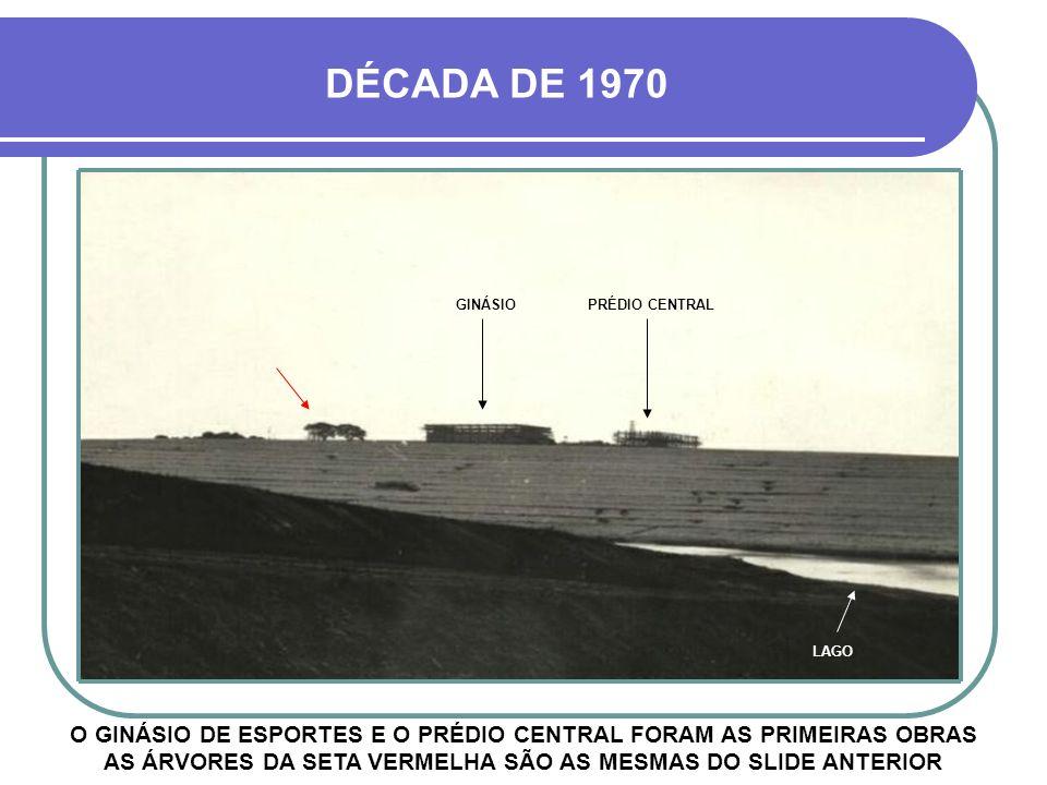 PONTA PÉ INICIAL FINALMENTE, EM 1974, COMEÇA A REALIZAÇÃO DO SONHO NA FOTO, A PROFESSORA MARIA DE LOURDES INSPECIONANDO A ÁREA A SER CONSTRUÍDA