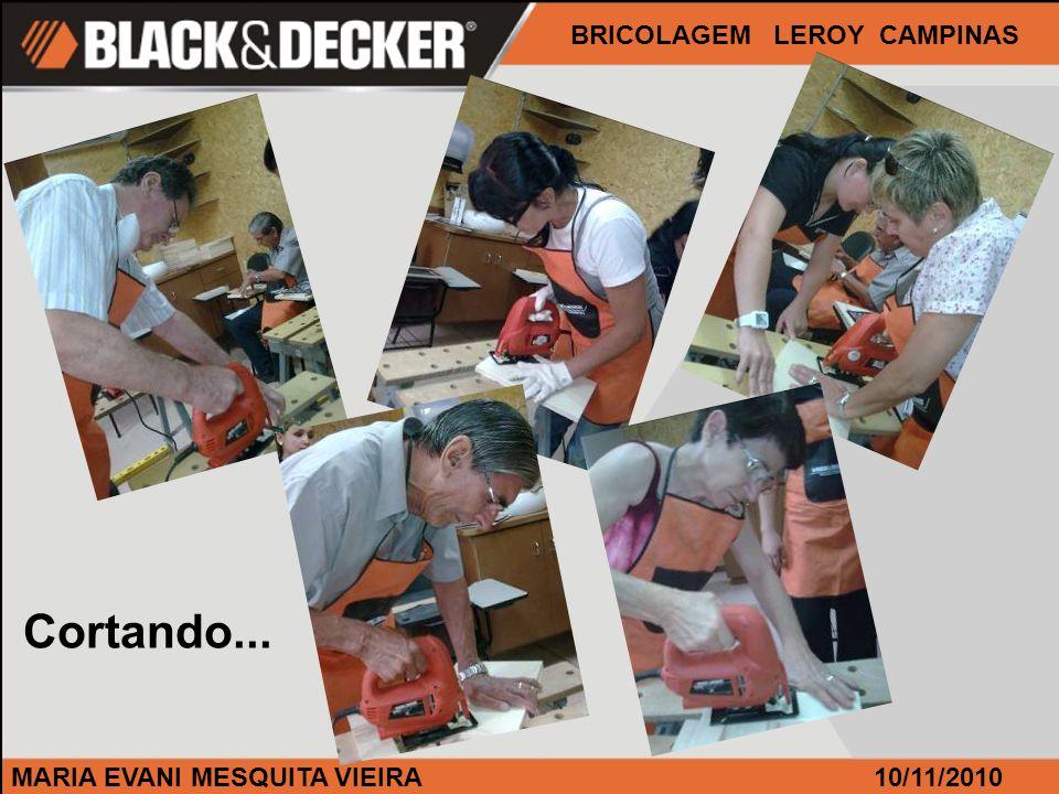 MARIA EVANI MESQUITA VIEIRA BRICOLAGEM LEROY CAMPINAS 10/11/2010 Cortando...