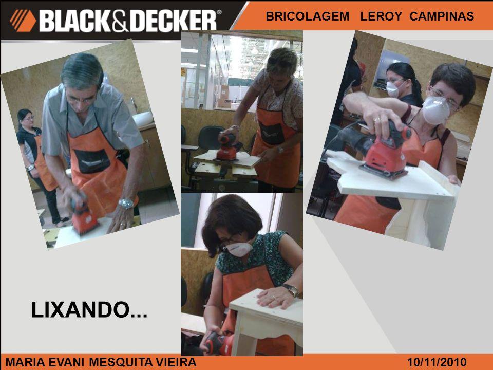 MARIA EVANI MESQUITA VIEIRA BRICOLAGEM LEROY CAMPINAS 10/11/2010 LIXANDO...