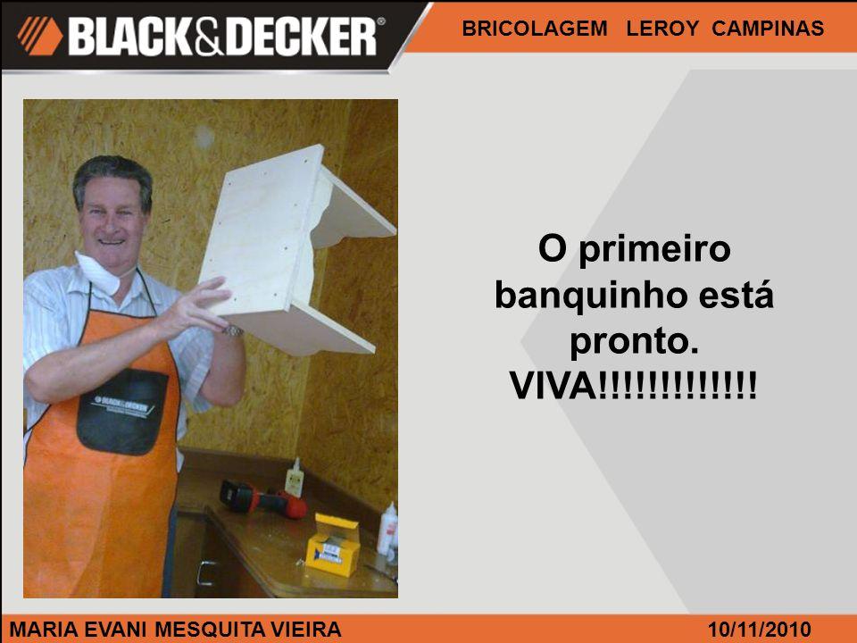 MARIA EVANI MESQUITA VIEIRA BRICOLAGEM LEROY CAMPINAS 10/11/2010 O primeiro banquinho está pronto. VIVA!!!!!!!!!!!!!