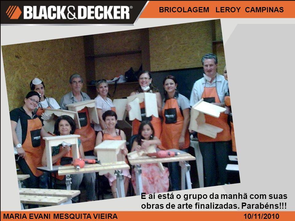 MARIA EVANI MESQUITA VIEIRA BRICOLAGEM LEROY CAMPINAS 10/11/2010 E aí está o grupo da manhã com suas obras de arte finalizadas. Parabéns!!!