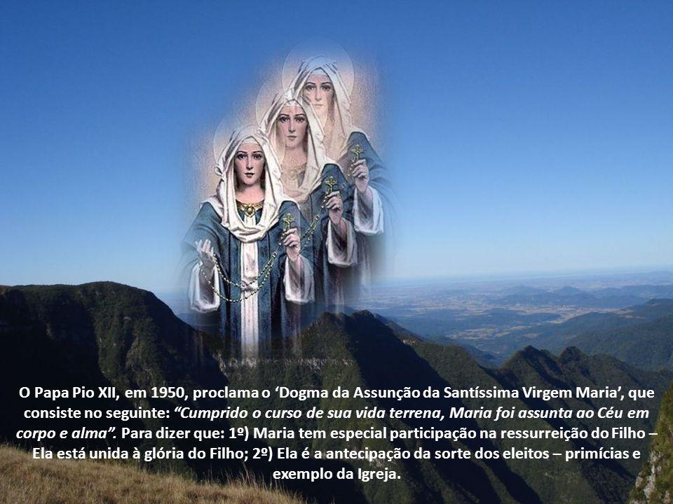 Hoje, dia de Nossa Senhora do Rosário, queremos lembrar a Sua Assunção.