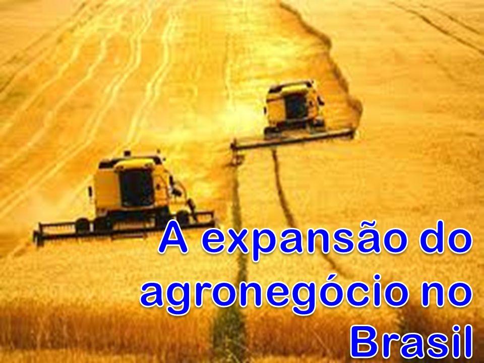 No ano de 2000 os produtores rurais brasileiros não conseguiram preço para a safra de milho que cobrisse, ao menos, as despesas com o plantio, adubação e colheita.