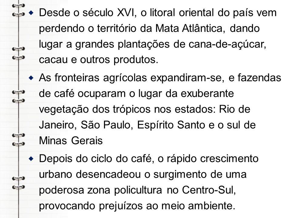 Os caprinos e os ovinos não oferecem ao Brasil o mesmo destaque da pecuária mundial.