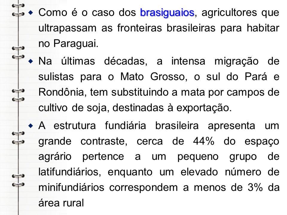 brasiguaios Como é o caso dos brasiguaios, agricultores que ultrapassam as fronteiras brasileiras para habitar no Paraguai. Na últimas décadas, a inte