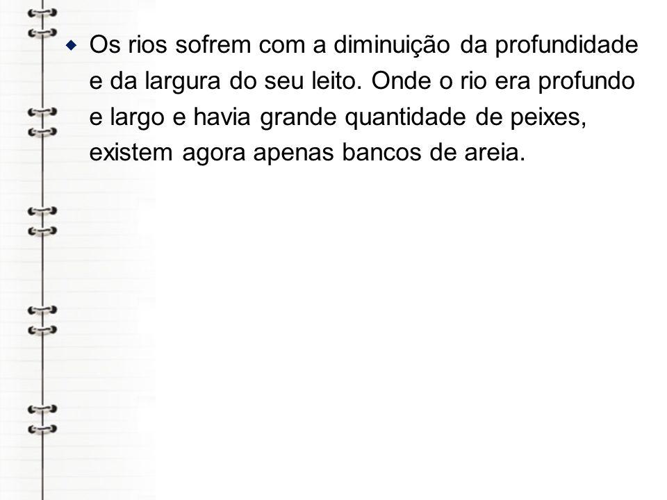 silvicultura A silvicultura, consiste no plantio de árvores de maneira planejada para a obtenção da celulose, matéria-prima do papel, bem como para fabricação de casas e móveis, ou a obtenção do látex, nos estados do Sudeste, Norte e sul do Brasil.