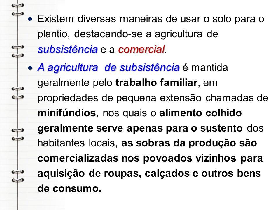 A agricultura comercial A agricultura comercial desenvolve-se em grandes propriedades, os latifúndios, na sua maioria dedicando-se à monocultura, cultivo de um só produto, comunmente voltada para abastecer o mercado externo.