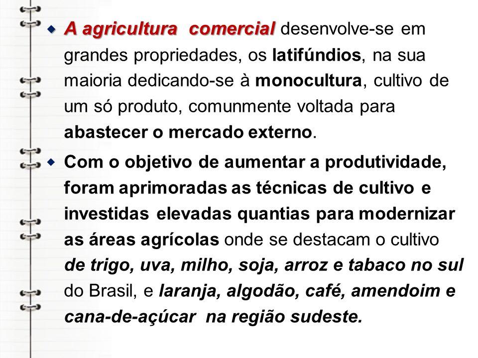 No litoral oriental do nordeste e no Recôncavo Baiano com a produção de cana-de-açúcar e cacau.