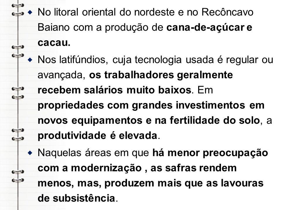 A zona rural brasileira apresenta alguns problemas: a maioria dos camponeses não é proprietário das terras onde trabalha, e costumam ser assalariados permanentes ou temporários, parceiros, arrendatários ou posseiros.