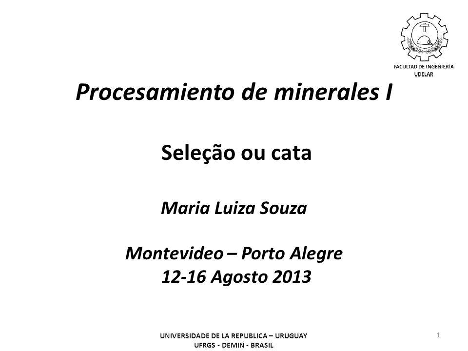 Procesamiento de minerales I Seleção ou cata Maria Luiza Souza Montevideo – Porto Alegre 12-16 Agosto 2013 1 UNIVERSIDADE DE LA REPUBLICA – URUGUAY UFRGS - DEMIN - BRASIL