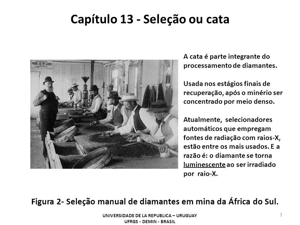 Capítulo 13 - Seleção ou cata UNIVERSIDADE DE LA REPUBLICA – URUGUAY UFRGS - DEMIN - BRASIL 4 Tecnologias usadas para a detecção de minerais - Óptica (LP): reconhece minerais industriais, metais preciosos, metais de base e gemas pela cor.