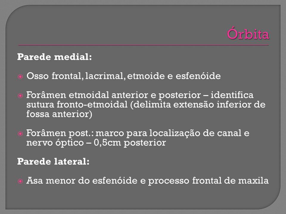 Parede medial: Osso frontal, lacrimal, etmoide e esfenóide Forâmen etmoidal anterior e posterior – identifica sutura fronto-etmoidal (delimita extensã