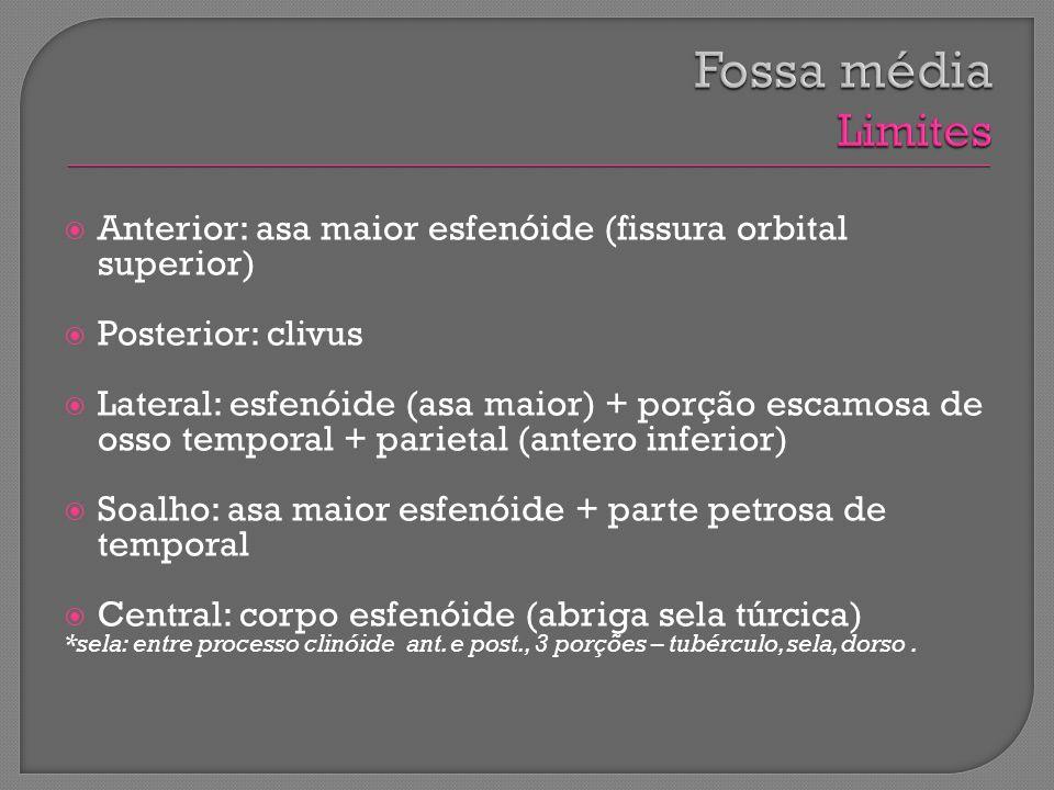Anterior: asa maior esfenóide (fissura orbital superior) Posterior: clivus Lateral: esfenóide (asa maior) + porção escamosa de osso temporal + parieta