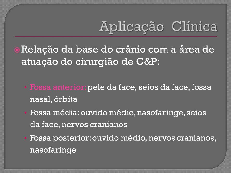 Relação da base do crânio com a área de atuação do cirurgião de C&P: Fossa anterior: pele da face, seios da face, fossa nasal, órbita Fossa média: ouv