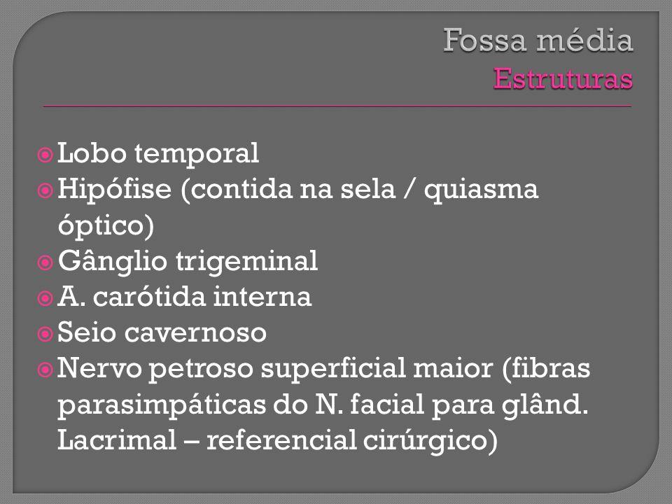 Lobo temporal Hipófise (contida na sela / quiasma óptico) Gânglio trigeminal A. carótida interna Seio cavernoso Nervo petroso superficial maior (fibra