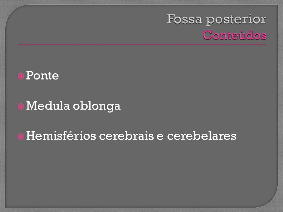 Ponte Medula oblonga Hemisférios cerebrais e cerebelares
