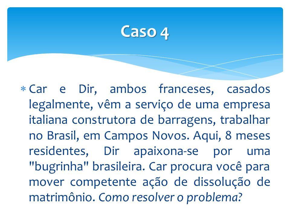 Car e Dir, ambos franceses, casados legalmente, vêm a serviço de uma empresa italiana construtora de barragens, trabalhar no Brasil, em Campos Novos.
