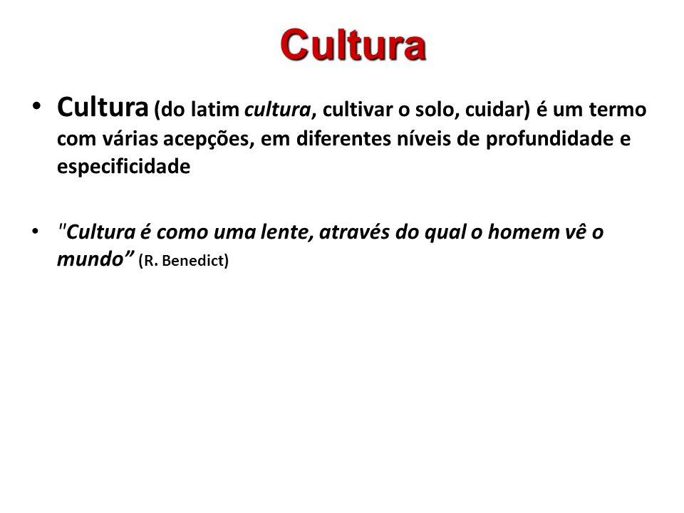 O que é Cultura 1.1.