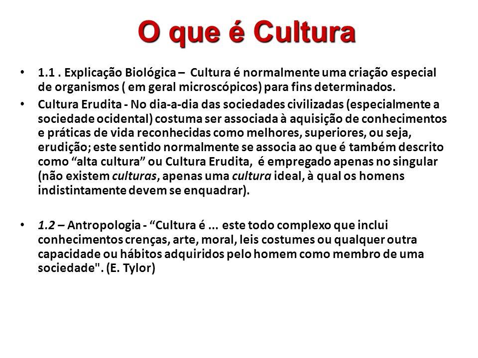 A cultura, portanto, é o que torna a vida humana possível no mundo.