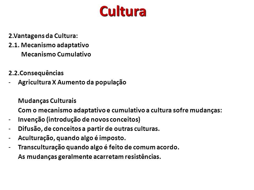 2.3.Percepção: A percepção da cultura é difícil para o ser humano comum.