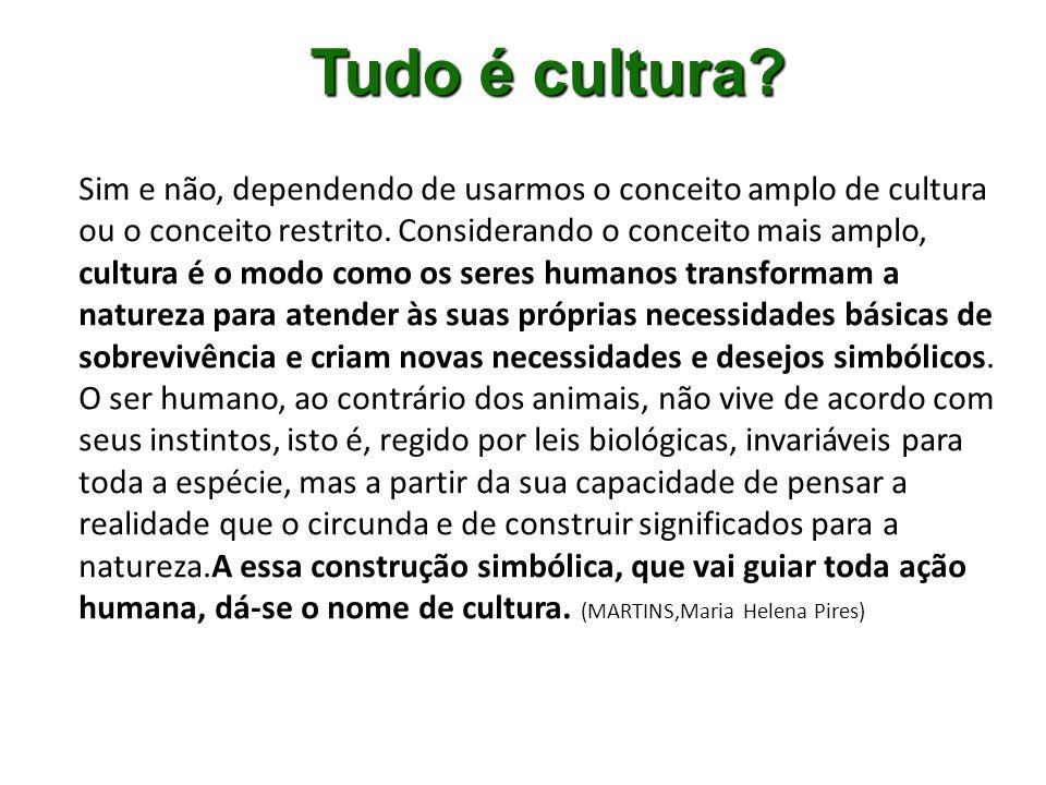 A cultura, nesse sentido amplo, engloba a língua que falamos, as idéias de um grupo, as crenças, os costumes, os códigos, as instituições, as ferramentas, a arte, a religião, a ciência, enfim, toda as esferas da atividade humana.