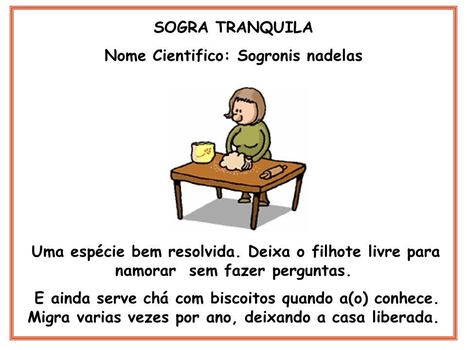 SOGRA JARARACA Nome Cientifico: Sogronis peçonhentus Essa e um perigo.